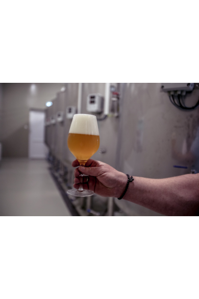 1 órás sörfőzde túra korlátlan sörfogyasztással